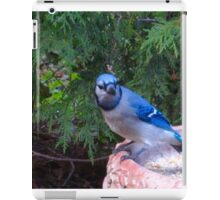Blue Jays and Peanuts, in the garden and the game! iPad Case/Skin