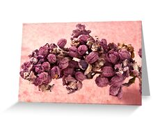 Dried Lilac Blossom Macro  Greeting Card