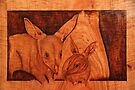 Pyrography: Bilby Mother and Baby by aussiebushstick