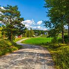 The rural landscape by Veikko  Suikkanen