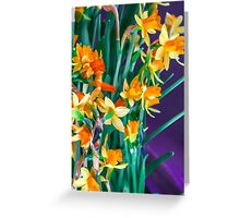ABSTRACT DAFFODILS IN ORANGE Greeting Card