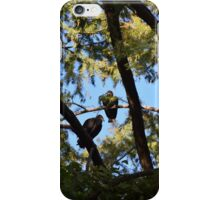 Watching from above iPhone Case/Skin