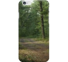 The Path Less Taken? iPhone Case/Skin
