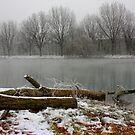 Winter atmosphere by annalisa bianchetti