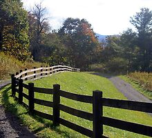 Country fence by Ginger Brown