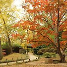 the colors of fall by ANNABEL   S. ALENTON