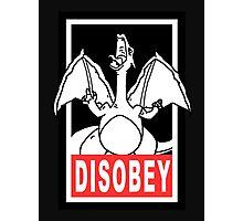 DISOBEY | Charizard Photographic Print