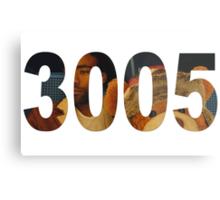 3005 Metal Print