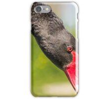 Bowing Black Swan... iPhone Case/Skin
