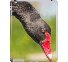 Bowing Black Swan... iPad Case/Skin