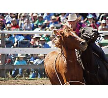 Mary Williams - Brumby Catch Photographic Print