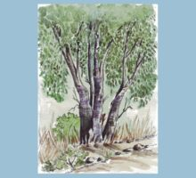 Blue gum trees across the road from my studio Kids Clothes
