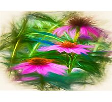 Painting Flower`s Photographic Print