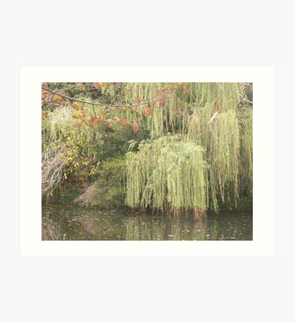 Nature on the river Art Print