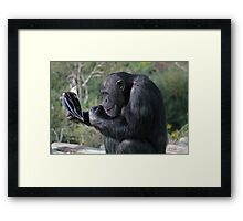 Catching up on the goss! Framed Print