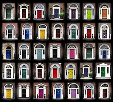 Dublin Doors by Susan Segal