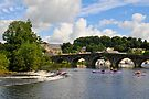 canoes on the weir at Graiguenamanagh, County Kilkenny, Ireland by Andrew Jones