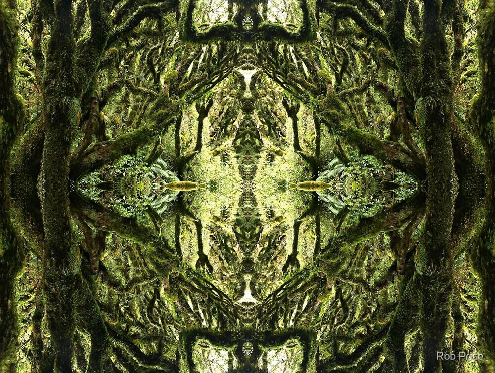 Taranaki by Rob Price