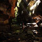 Rocky Creek Canyon, Blue Mountains, NSW, Australia. by Andy Newman