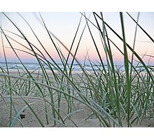 Lennox Head grassy hill with sunset backdrop Photographic Print