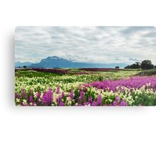 Pink and yellow field Metal Print