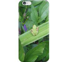 Green Friend iPhone Case/Skin