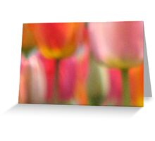 Tulip Abstract Greeting Card