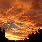 A Very Colorful Sunset Sky by stevealder