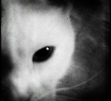 White cat. Dark version by Marie Charrois
