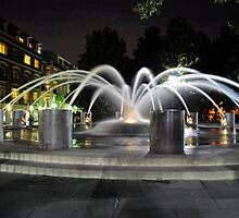 Charleston SC Fountain at night at the Water Front Park by TJ Baccari Photography