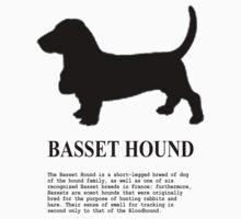 Basset Hound by benyuenkk