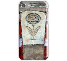 The Devil is in the Details IV iPhone Case/Skin