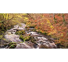 Autumn river scene Photographic Print
