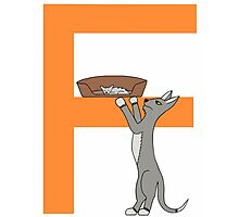 Cat Alphabet Letter F Photographic Print