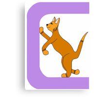 Cat Alphabet Letter C Canvas Print