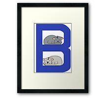Cat Alphabet Letter B Framed Print