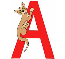 Cat Alphabet Letter A Photographic Print