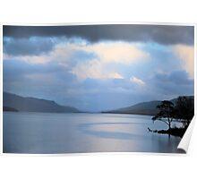 Loch Rannoch Trees  Poster