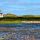 St. Peter's Harbour Lighthouse II by Kathleen Daley
