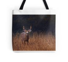 In Autumns Fields - White-tailed deer Tote Bag
