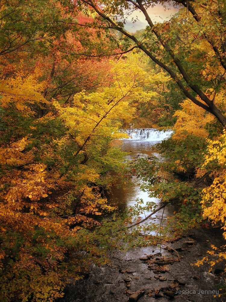 Autumn on Display by Jessica Jenney