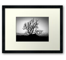 Stand Strong Framed Print