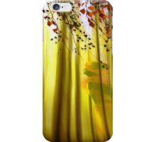 Final Sweep iPhone Case/Skin