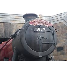 Hogwarts Express by Attractions Merch Museum