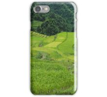 every shade of green iPhone Case/Skin
