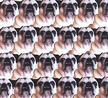 Puggy Pattern by vwrites