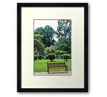 finding peace in the city  Framed Print