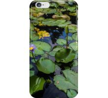 standing tall on the water iPhone Case/Skin
