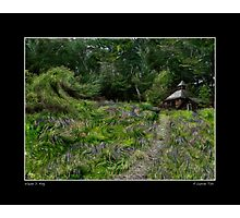 A Lupine Tale for Vincent Fine Art Poster Photographic Print