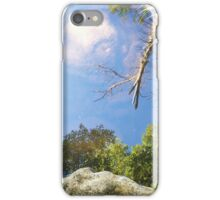 Reflection in a mountain stream iPhone Case/Skin